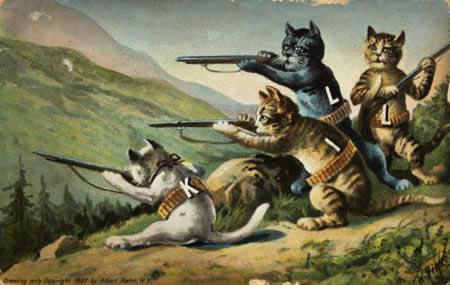 Photo: Cats hunting.